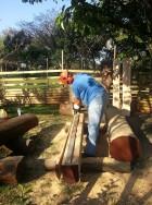 Log-Cut-01