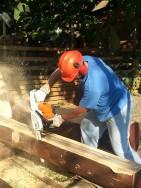 Log-Cut-02